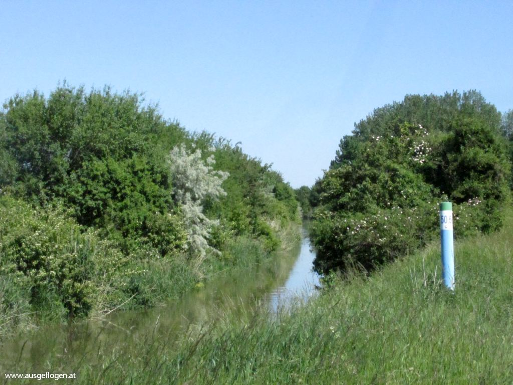 Marchfeldkanal Radweg
