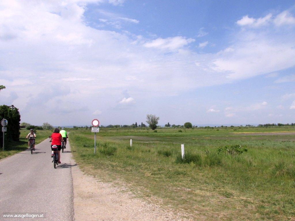 Neusiedlersee Radweg mit Kindern