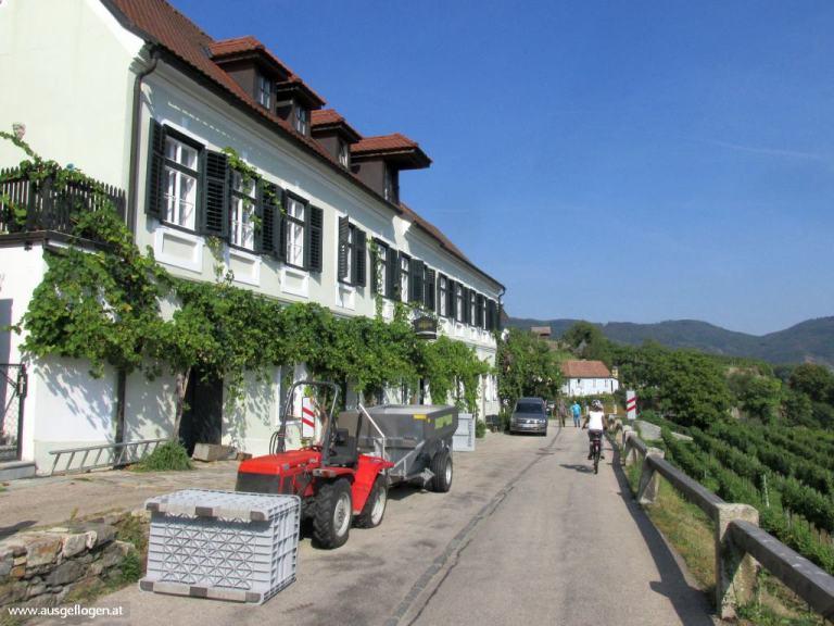 Weißenkirchen Wachau Radweg