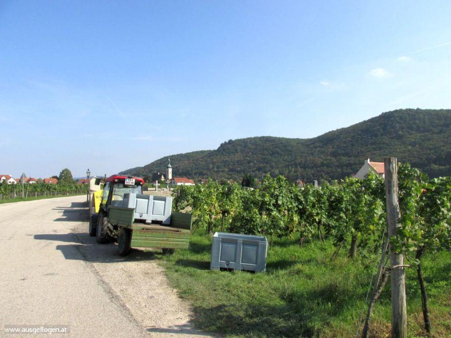 Wachau Radweg
