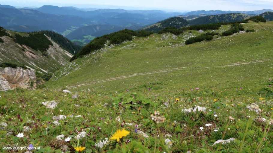 Hochkar Gipfel