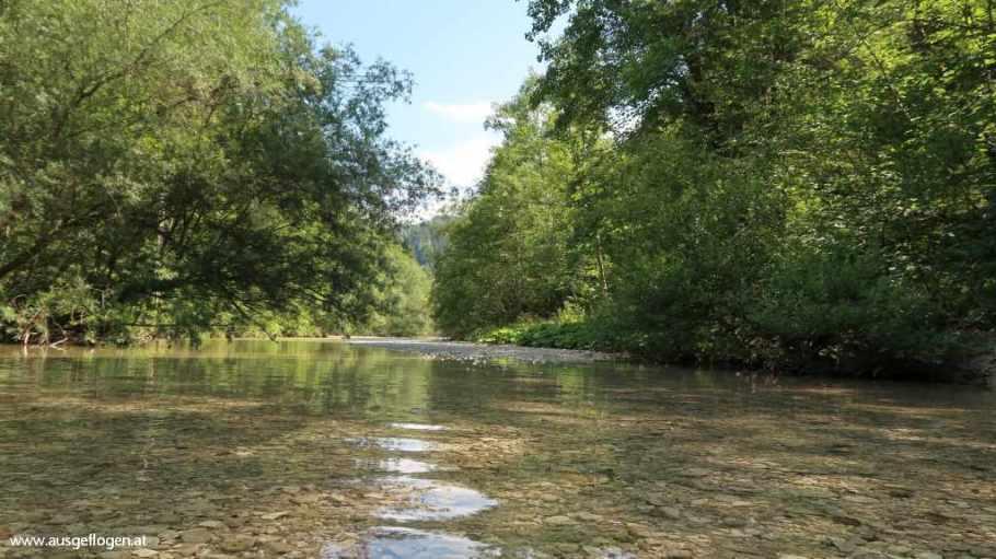 Wildnisgebiet Dürrenstein Eulenweg Lunzer See