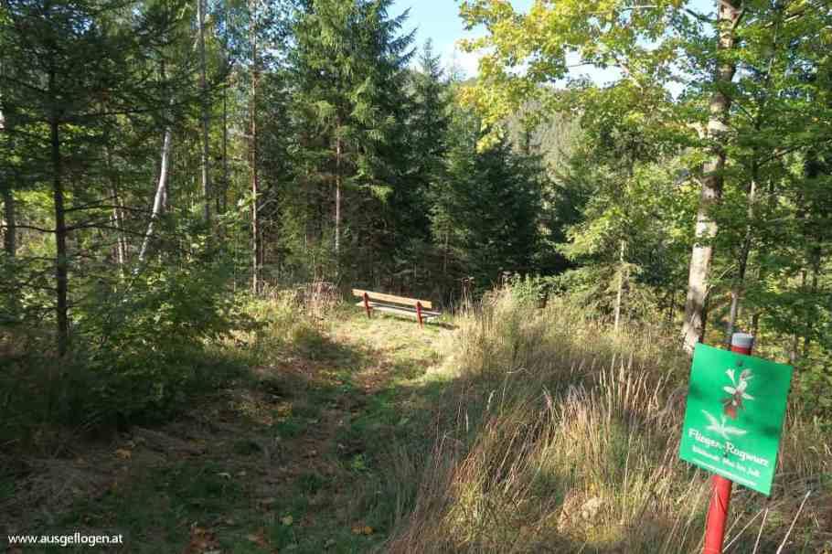 wandern zwischen Semmering und Payerbach