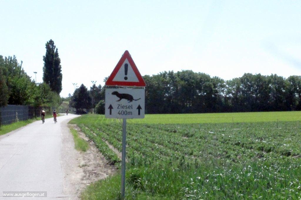 Marchfeldkanalradweg