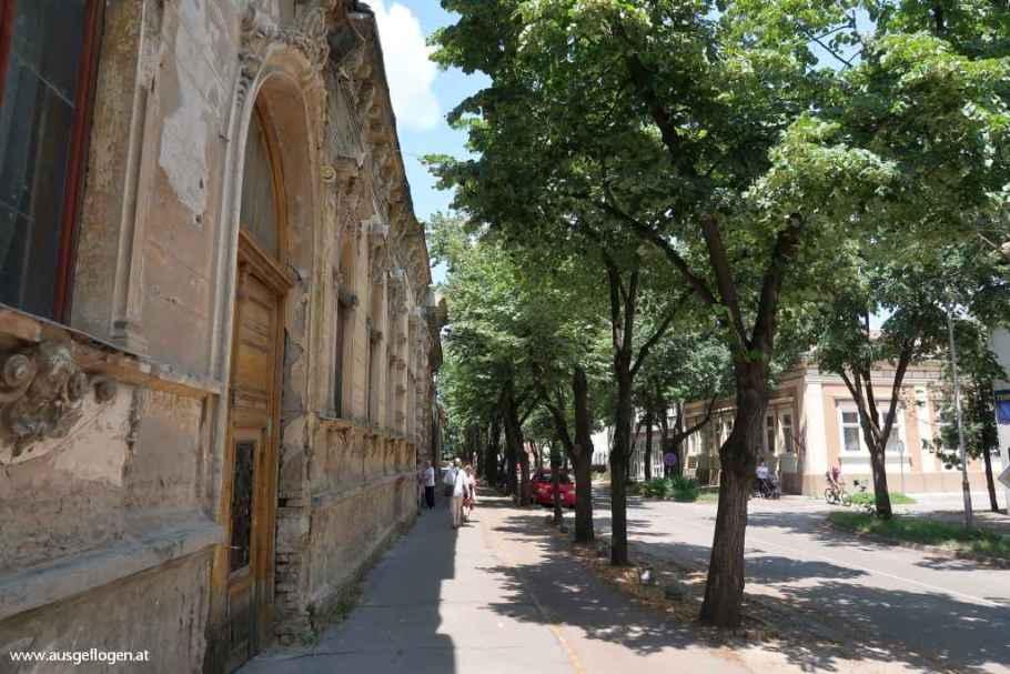 Spaziergang Senta Serbien
