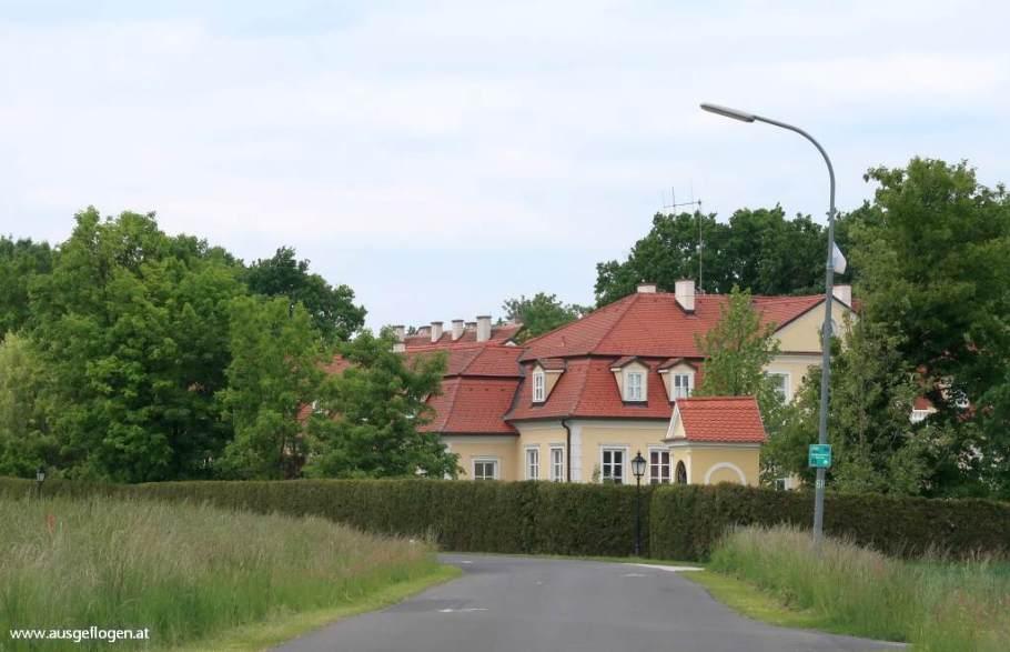 Lusing Mensdorff-Pouilly