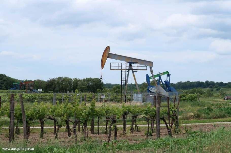 Erdöl Weinviertel