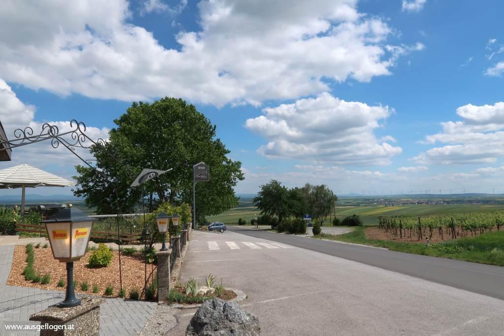 Steinberg Weinviertel Aussicht