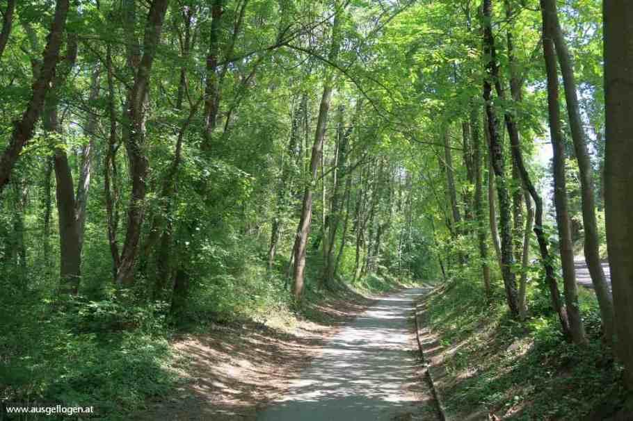 Naturdenkmal Peterwald