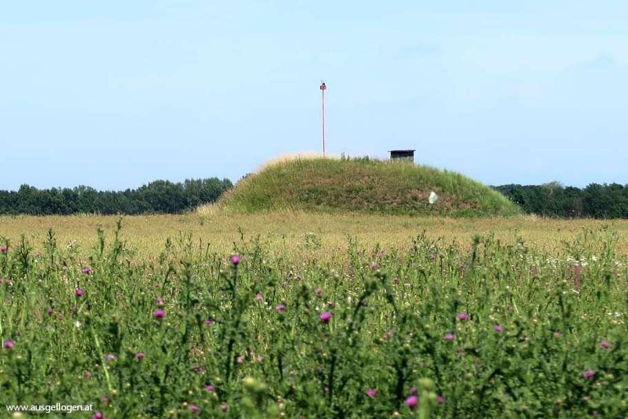 Hügelgräber Bernhardsthal Rabensburg