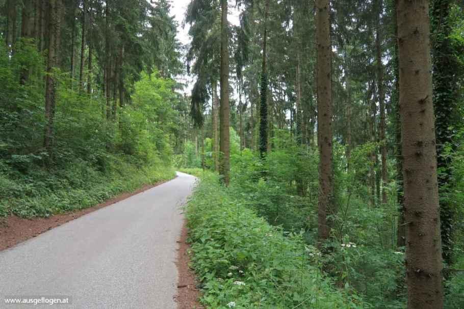 Murradweg Etappen Mittleres Murtal