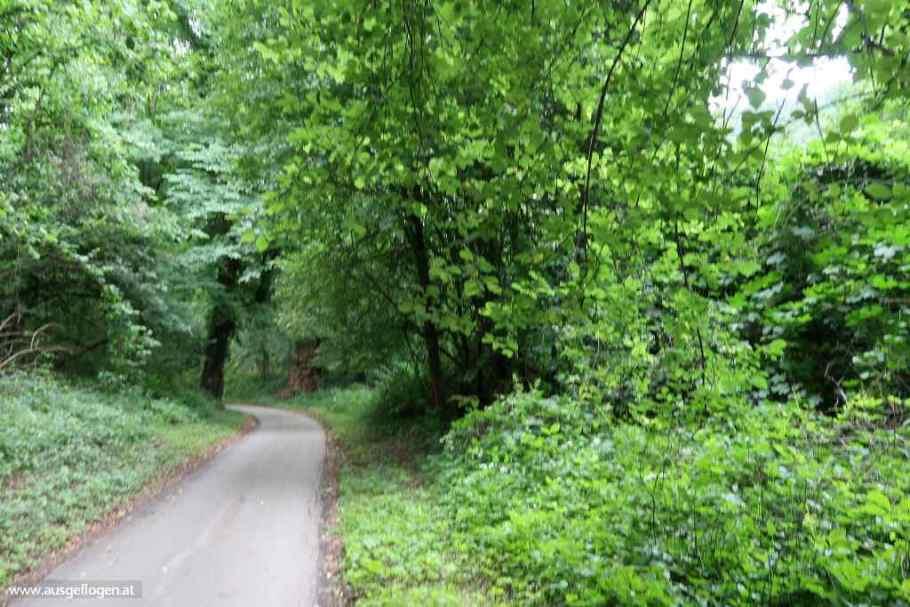 Murradweg Etappe Bruck Frohnleiten