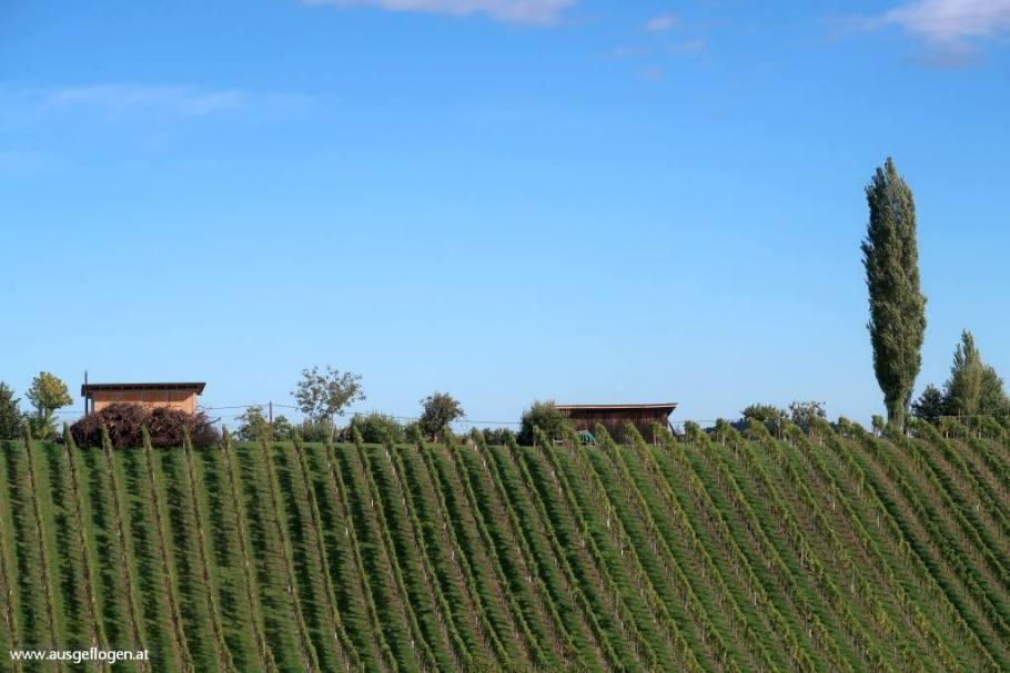 südsteirische Weinstraße Toskana