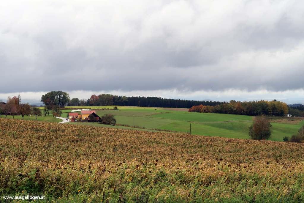 Sauwald Oberösterreich Innviertel