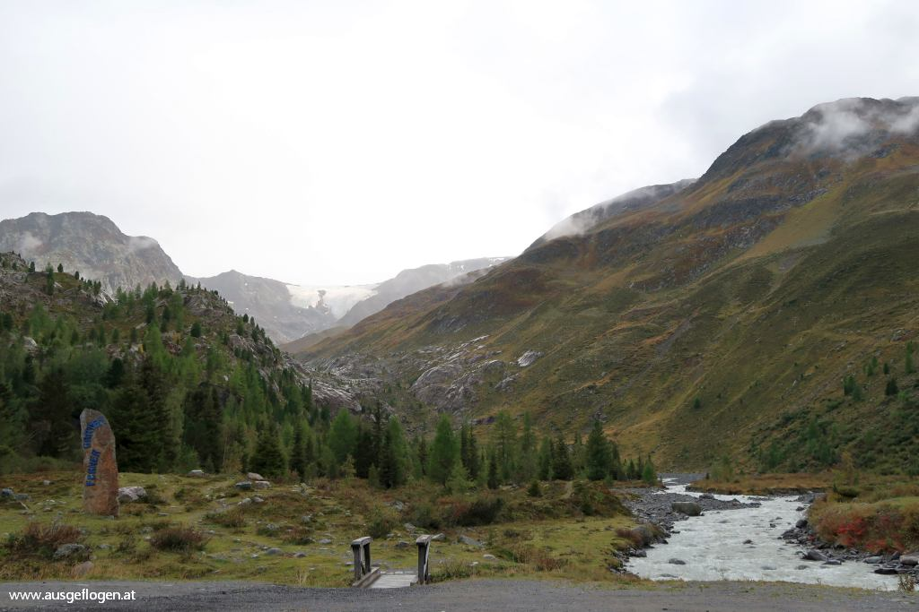 Zirbenwald Kaunertal subalpine Stufe