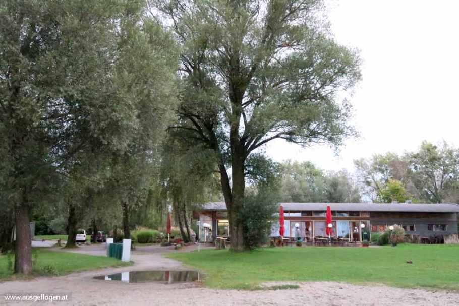 Rheindelta Naturschutzgebiet schönstes Bodenseeufer