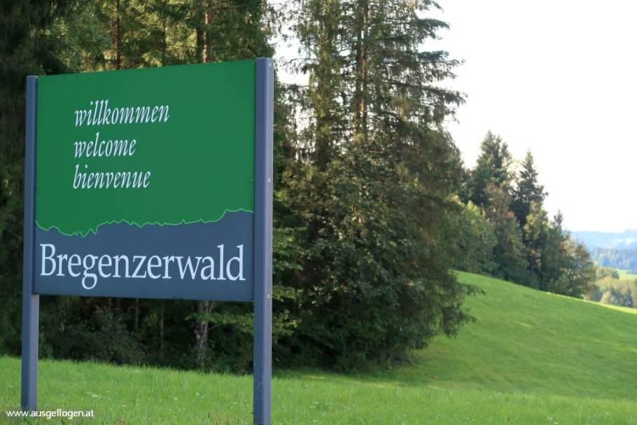 Bregenzerwald Nagelfluhkette