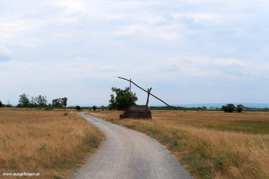 Lackenradweg Neusiedlersee