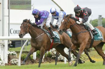 Australian-bred Bisou Bisou wins the Group Two Auckland Thoroughbred Breeders Stakes.