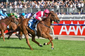 Divine Quality charges home to win the Furphy Sprint