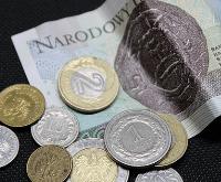 Euro in Zloty wechseln