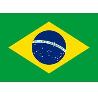 Die besten Reiseversicherung für Brasilien