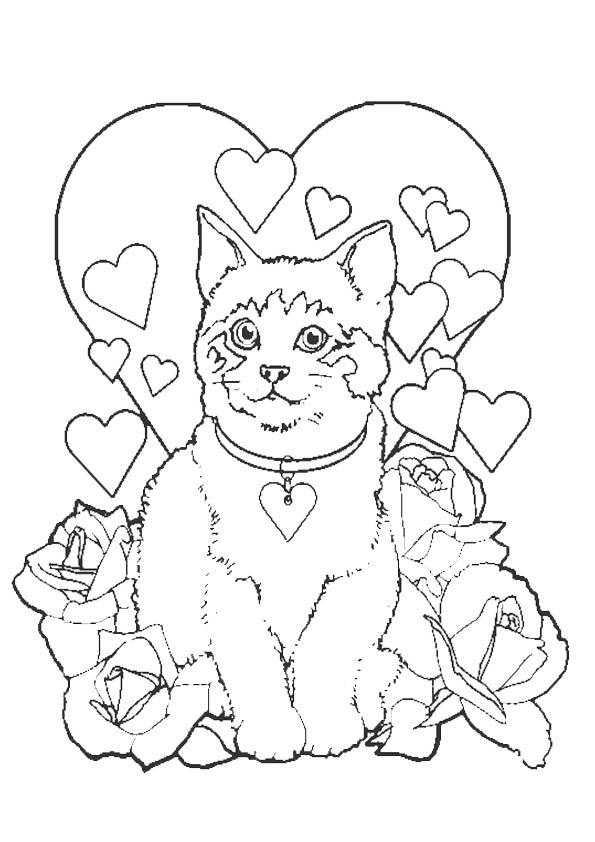 Ausmalbilder Malvorlagen Katze 12 Ausmalbilder Malvorlagen