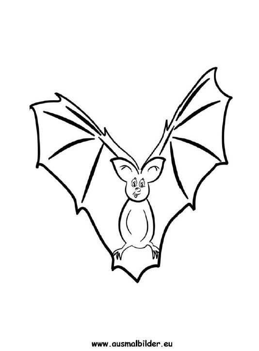 Ausmalbilder Fledermaus Flederm 228 Use Malvorlagen