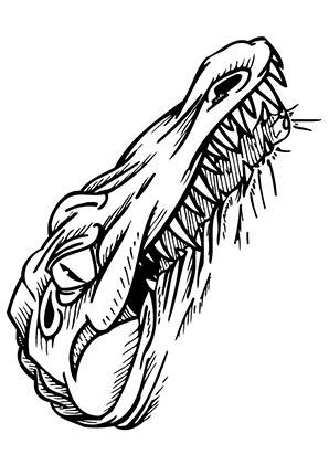 Ausmalbilder Bses Krokodil Krokodile Malvorlagen
