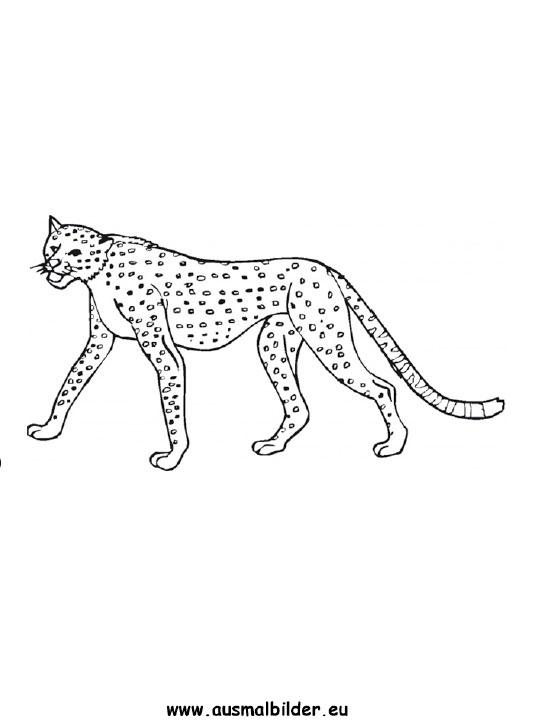 Ausmalbilder Leopard Leoparden Malvorlagen
