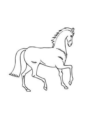 Ausmalbilder Braunes Pferd Pferde Malvorlagen