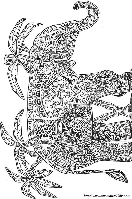 Ausmalbilder Fr Erwachsene Bild Elefant Mit Palmen