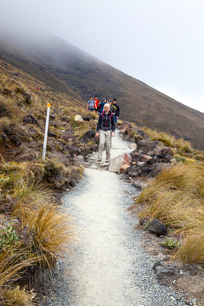 Abstieg vom Mt. Tongariro