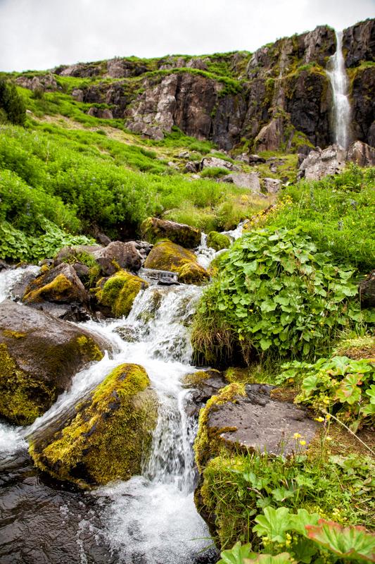 Wasserfall in Seydisfjördur