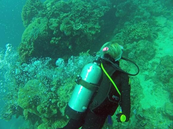 Tauchen am Great Barrier Riff