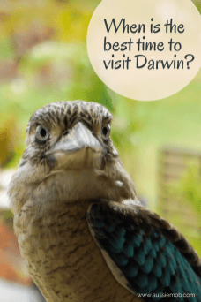 When is the Best time to visit Darwin_ (2)