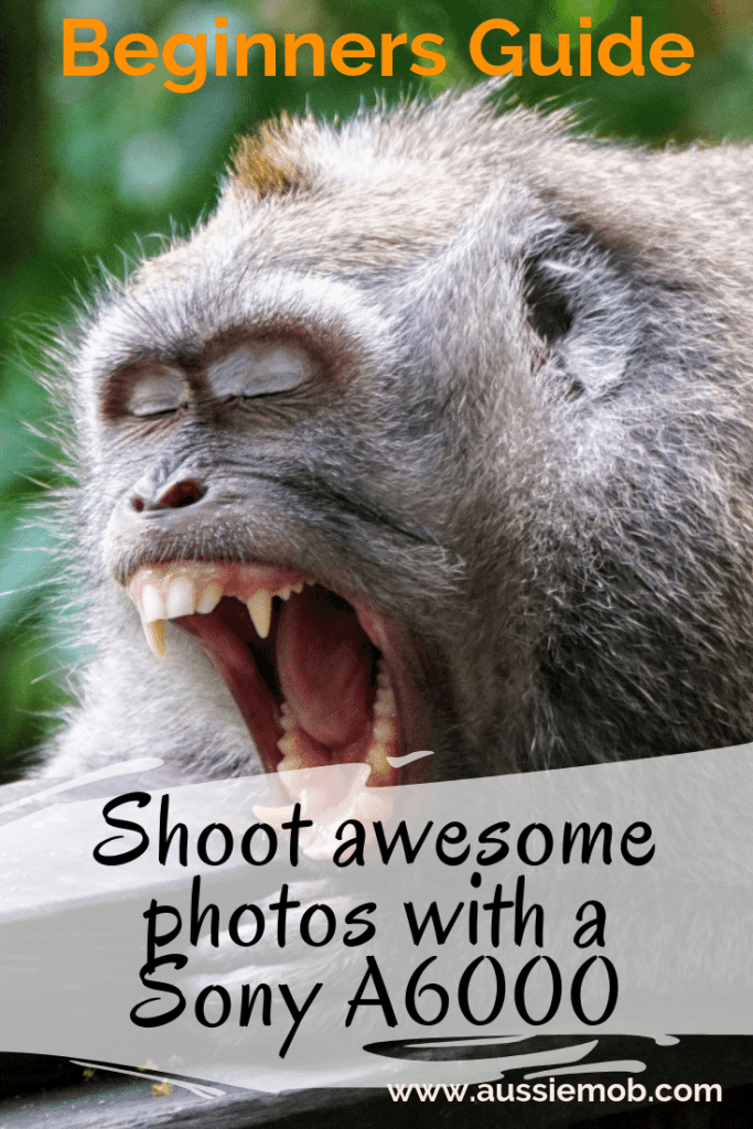 Shoot awesome photos with a Sony A6000