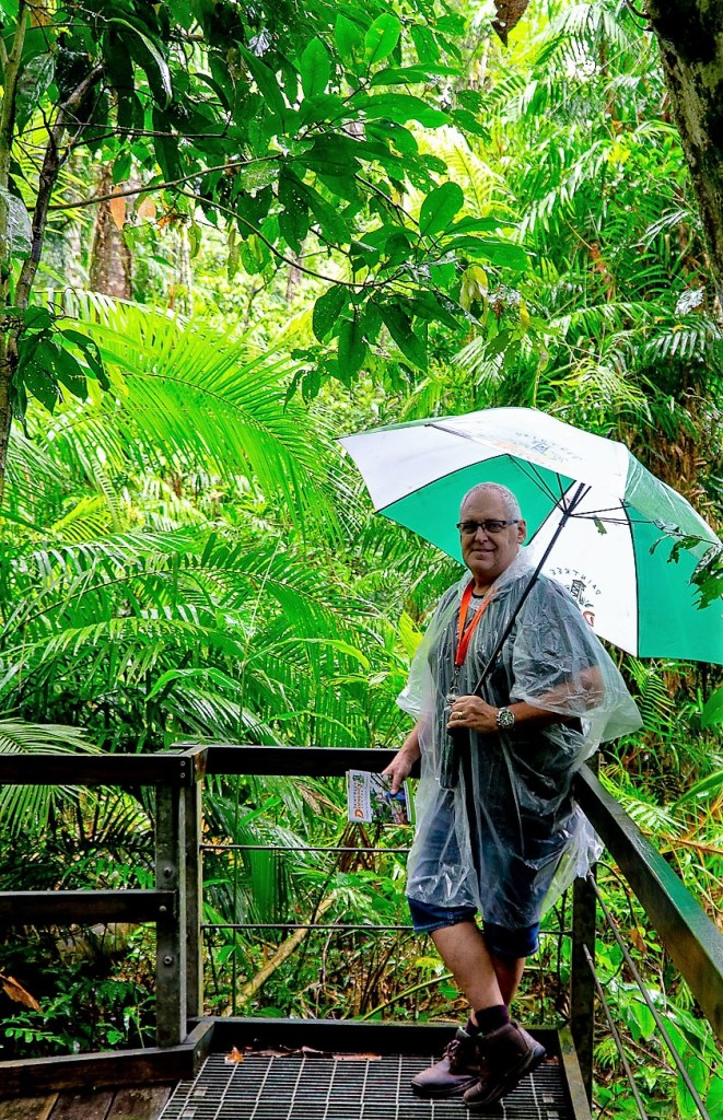 the Daintree Discovery Centre