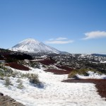 Travel Daydream: Tenerife
