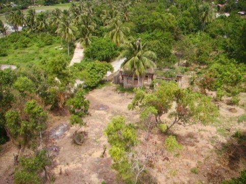 An abandoned hut on Monkey Island