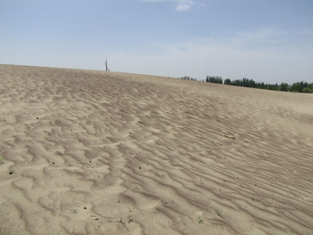 Sands of the Taklimakan