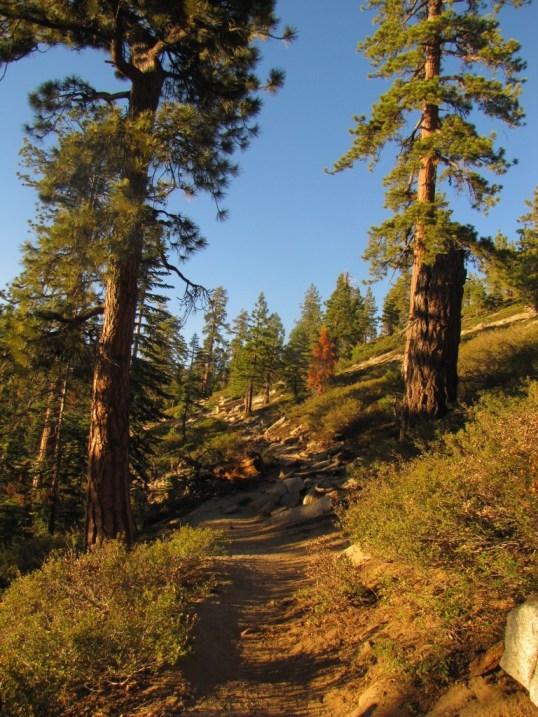 Sentinel Dome trail, Yosemite