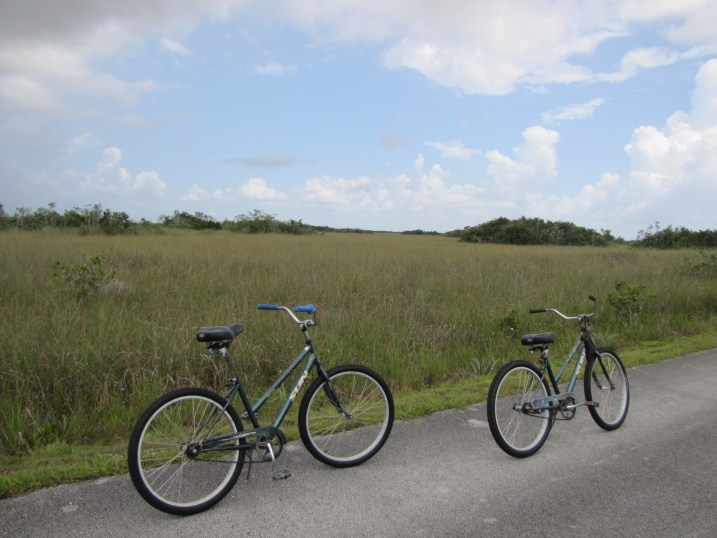 Biking the Everglades