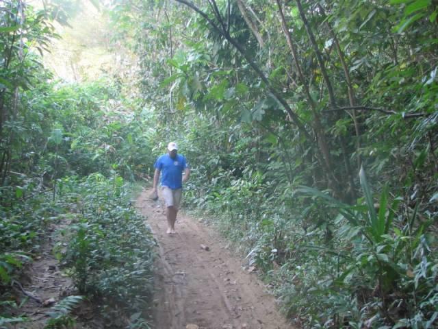 Sporting my Finn the Human hat, I slog through the jungle.