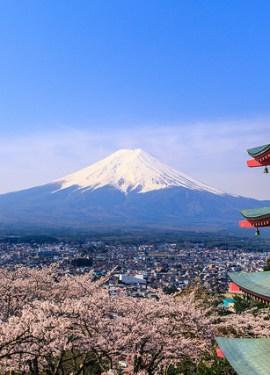 mount fuji chureito pagoda