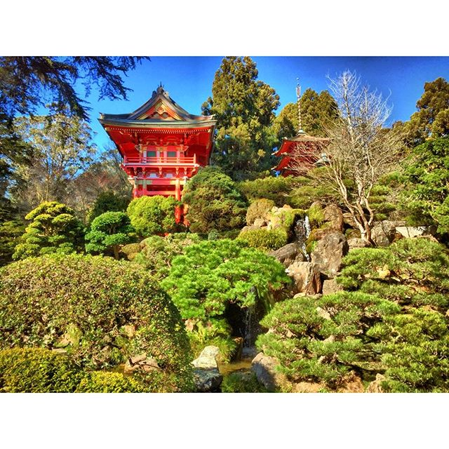 japanese tea gardens pagoda san francisco