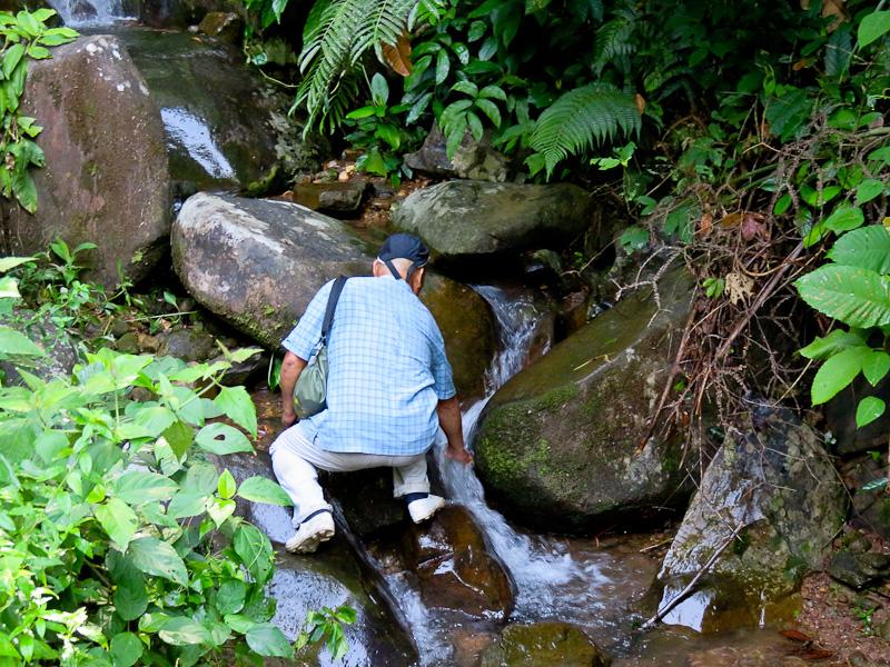 kiulu farm stay jungle trek