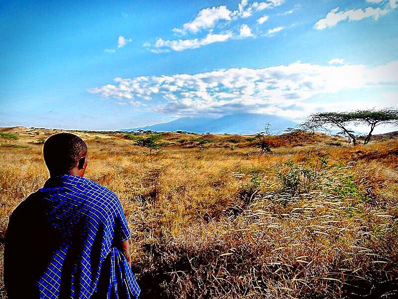 maasai masai man tanzania kenya serengeti
