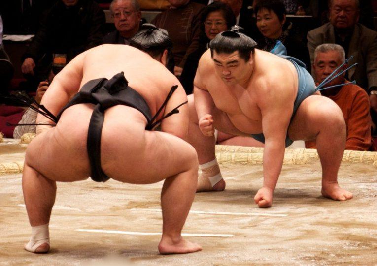 6 - Sumo