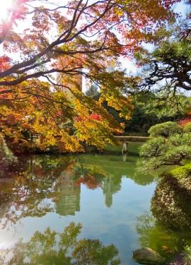 day-in-kobe-soraku-en-garden-3